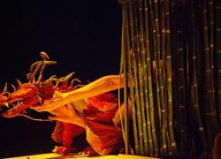 Mostra Paranaense de Teatro de Bonecos muito post