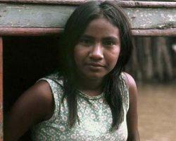 dia da amazônia muito post